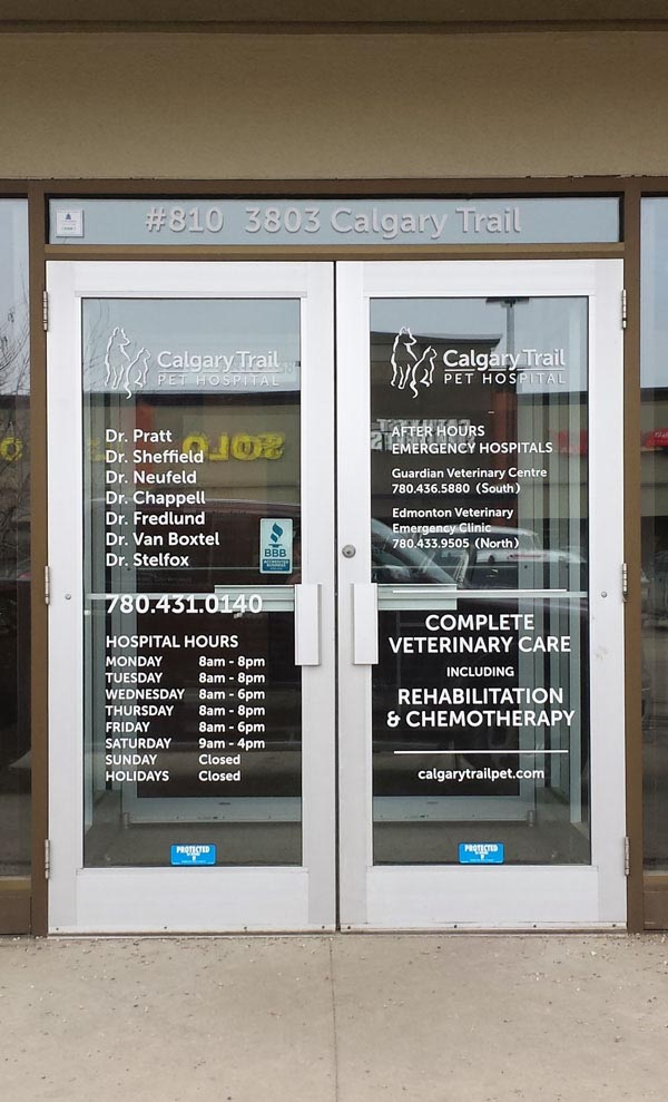 Pet Hospital Window Decals